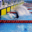 Stock Photo: Swimming race