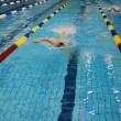 Swimming race — Stock Photo #2612326