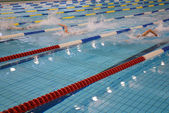 Swimming race — Stock Photo
