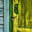 Foto Stock: Old door