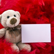 Teddy bear with notice — Stock Photo