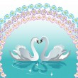 Swan backgrounds — Stock Vector