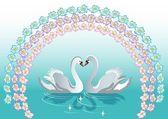 Swan backgrounds — Stock Vector