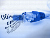 Tonos azul cable ethernet — Foto de Stock