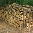Woodpile - Stock Photo