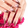 Closeup image of beautiful nails — Stock Photo #1762897
