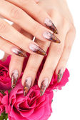 Closeup image of beautiful nails — Stock Photo