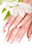 Beautiful nails and fingers — Stock Photo