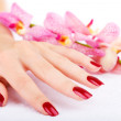 Hand with pink orchid — Stock Photo
