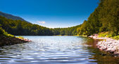 биоградское озеро в черногории — Стоковое фото