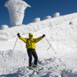 Skier on high mountain - Stock Photo