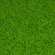 High resolution green grass background — Stock Photo