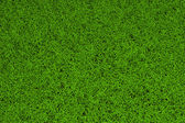 High resolution green grass background — 图库照片