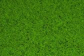 Pozadí zelené trávy s vysokým rozlišením — Stock fotografie