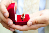 Wedding rings in hands — Stock Photo