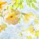 жизнь, Цветы, красиво картинки на рабочий стол.