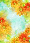 Flower background — Stock Photo