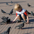 Love and pigeons — Stock Photo