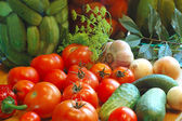 Vegetables ready to salting — Stock Photo