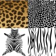 Stock Vector: Animals skin.