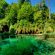 national park plitvice — Stock Photo
