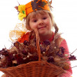 Young autumn - Stock Photo