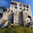 Ruin castle — Stock Photo