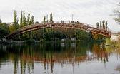 Foot-bridge — Stock Photo