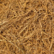 Hay texture and background — Stock Photo