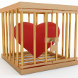 Heart in cage — Stock Photo #2117333