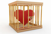 Heart in the cage — Stock Photo