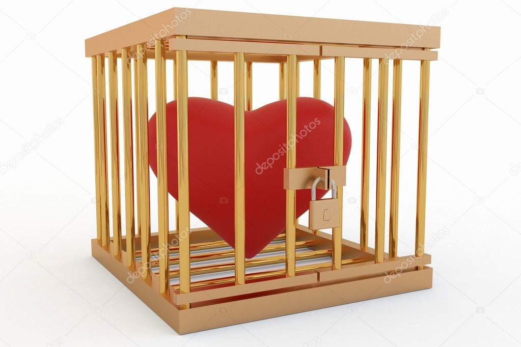 Heart in the cage — Stock Photo #2117333