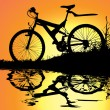 Stock Vector: Bicycle reflection