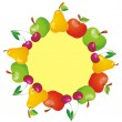 Frame with fruits — Stock Vector