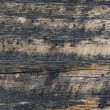 Wood texture — Stock Photo #2428975