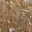 Wood texture with cracked paint — Stock Photo