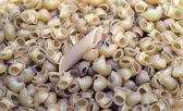 Macaroni macro — Stock Photo