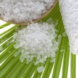 Stock Photo: Bath salt and palm leaf