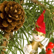 Isolated pine branch with cone. christmas — Stock Photo