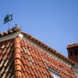 Red tiled roof - Stock Photo