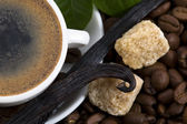 Aroma coffee with vanilla and coffee branch — Stock Photo