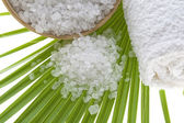 Bath salt and palm leaf — Stock Photo