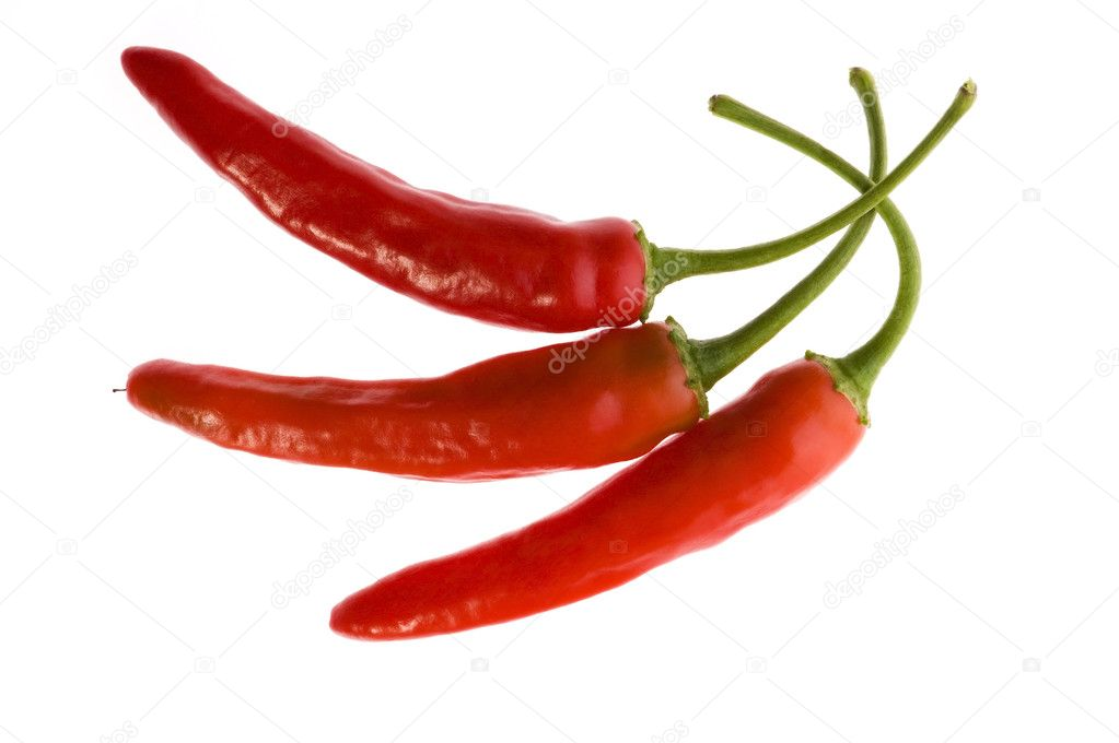 Red hot chilli peppers isolated on white — Stock Photo #1740434
