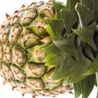 Pineapple — Stock Photo #1754093