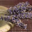 Lavender bunch — Stock Photo #1757180