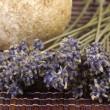 Lavender bunch — Stockfoto