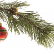 Christmas decoration — Stock Photo #1768184