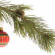 Christmas decoration — Stock Photo #1768202