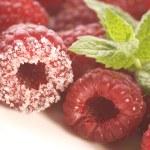 Sweet raspberries, cinnamon and fresh mint — Stock Photo #1776913