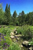 Sommerlandschaft. Fluss — Stockfoto